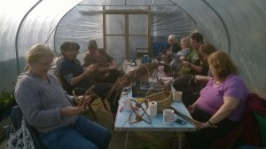 polytunnel weaving